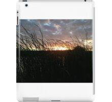 tall pond reeds at sunset iPad Case/Skin