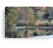 Autumn by the pond Canvas Print