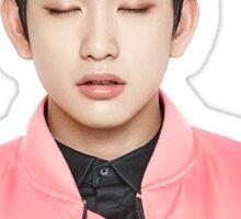 Jinyoung Sticker