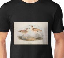 John Gould The Birds of Europe 1837 V1 V5 266 Cream Coloured Courser Unisex T-Shirt