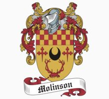 Molinson Coat of Arms (Scottish) Kids Clothes