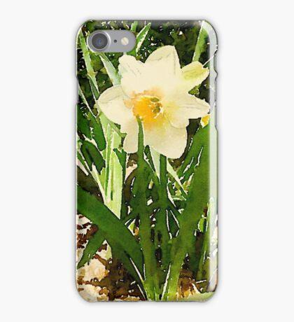 White Garden Daffodil in the Morning Sun iPhone Case/Skin
