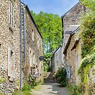 A Back Alley in Rochefort-sur-Loire, France by Elaine Teague