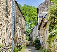 A Back Alley in Rochefort-en-Terre, Brittany, France by Elaine Teague