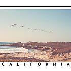 California by Bernard Mesa