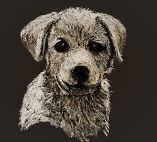 Puppy by HenryGaudet