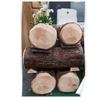 composition with wooden logs Poster