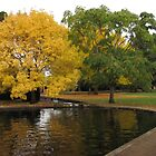 Autumn at Salmon Ponds by Derwent-01