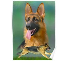 German Shepherd Breed Art Poster