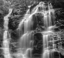 Sylvia Falls in Monochrome by Michael Matthews