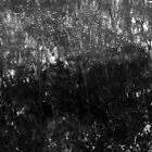 black and white swamp by avalyn