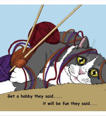 Hobby Cat Sticker