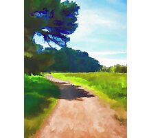 Path in a Park Photographic Print