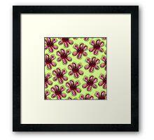 Geraldton Wax Flower Pattern Australian Flower Art Framed Print