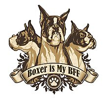 Boxer is My BFF Dog Owner Gifts & Merchandise Photographic Print