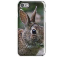rabbit iPhone Case/Skin