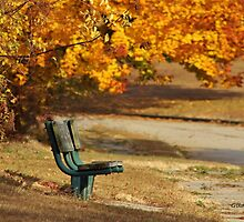 Autumn Benches by Gilda Axelrod