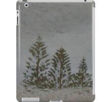 tao  (a rockpool reflection) iPad Case/Skin