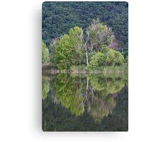 landscape lake Canvas Print