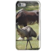 Horse and Emu iPhone Case/Skin