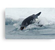 Diving Emperor Penguin Canvas Print