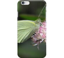 Sulphur On Sedum iPhone Case/Skin
