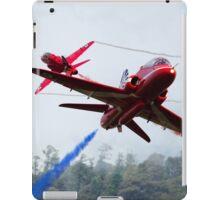 Red Pair  iPad Case/Skin