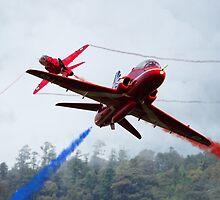 Red Pair  by J Biggadike