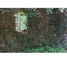 abandoned cottage in the mountain Photographic Print