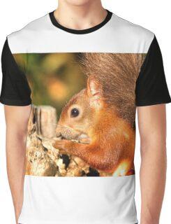 Morning Nuts Graphic T-Shirt