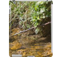 stream in the forest iPad Case/Skin