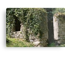abandoned cottage in the mountain Metal Print