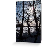 WINTER SUN SILHOUETTING TREES IN SNOWY DEVON Greeting Card
