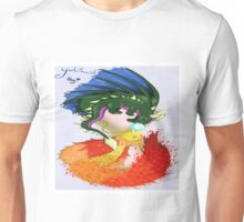 The Dragon And The Phoenix Unisex T-Shirt