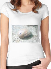 White Seashell  Women's Fitted Scoop T-Shirt