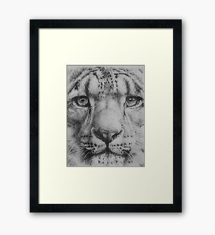Up Close Snow Leopard Framed Print