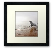 Kahala Mornings  Framed Print
