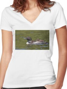 Common loon swimming with two chicks on her back Women's Fitted V-Neck T-Shirt