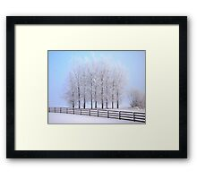Frozen Poplar Trees II, Northern Ireland Framed Print