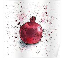 Pomegranate Poster