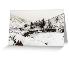 Winter In The Coquet Valley Greeting Card