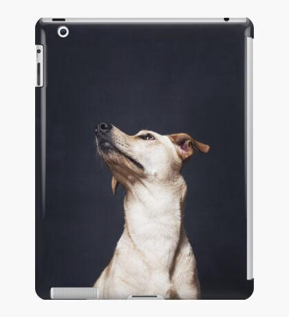 Portrait of a beautiful dog iPad Case/Skin
