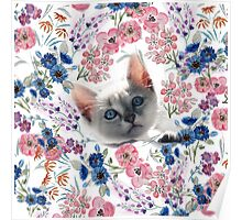 Cute kitten and watercolor floral hand paint design. Poster