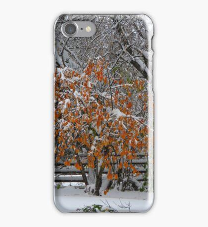 Oct Snowstorm 2016 iPhone Case/Skin