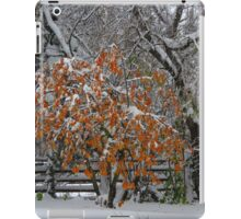 Oct Snowstorm 2016 iPad Case/Skin