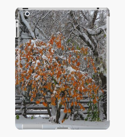 Oct Snowstorm 2016 iPad Case/Skin