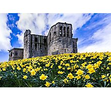 Spring at Warkworth Castle Photographic Print