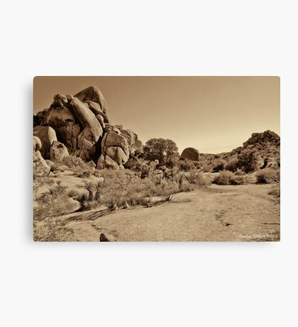 Live Oak Arroyo - Joshua Tree National Park Canvas Print