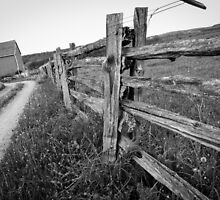 Wooden Fence by Irena Paluch