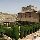 Al Hambra Palace by Janone